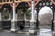 I like to believe she is invoking World Peace;  Belvedere Castle Terrace in Central Park.