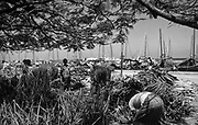 Fire wood and thatch for sale on Male docks.<br /> circa. 1990