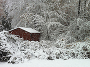 movie of snowfalling on barn in winter, cellphone photography,Iphone pictures,smartphone pictures