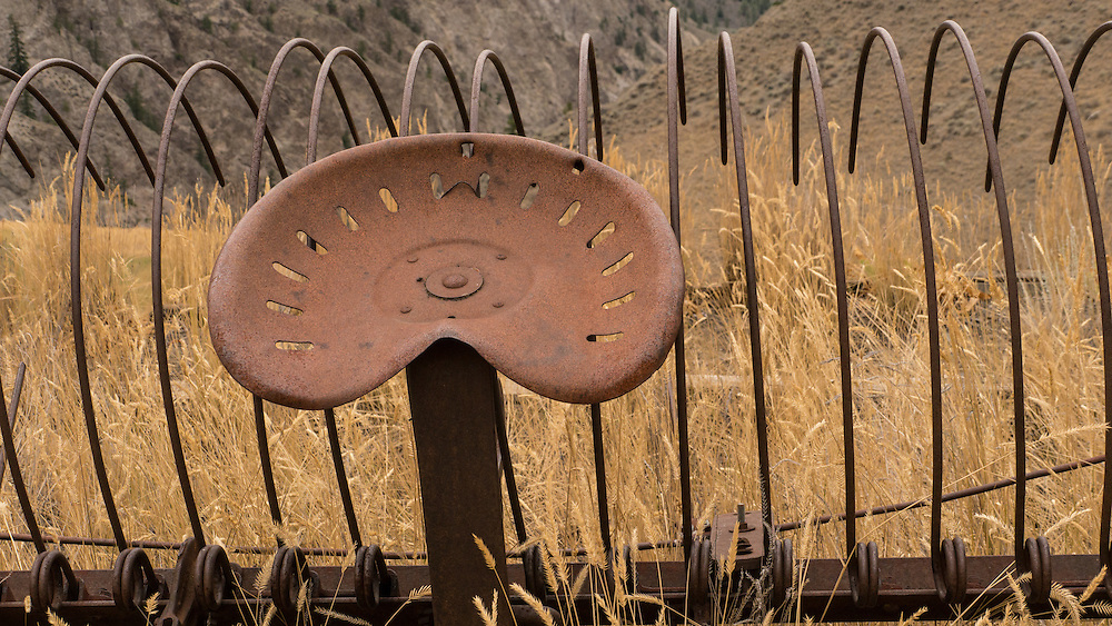 Rusty metal seat of abandoned antique horse drawn haying wheel rake is surrounded by dried golden yellow end of summer grass.