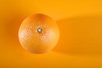 Oranges on white background - studio shot