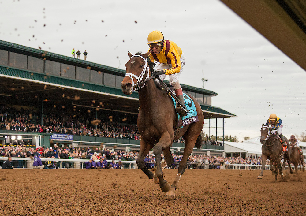 October 31, 2015: Rachels Valentina races in The  Breeders' Cup Juvenille Filies at Keeneland Race Track in Lexington, Kentucky. Evers/ESW/CSM