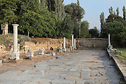 Ruins between the Tetrapylon and the Temple of Aphrodite along a paved road, Aphrodisias, Aydin, Turkey. Aphrodisias was a small ancient Greek city in Caria near the modern-day town of Geyre. It was named after Aphrodite, the Greek goddess of love, who had here her unique cult image, the Aphrodite of Aphrodisias. The city suffered major earthquakes in the 4th and 7th centuries which destroyed most of the ancient structures. Picture by Manuel Cohen