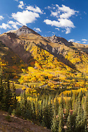 Fall colors explode on the slopes of Hayden Mountain, Ouray, Colorado