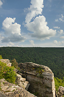 Puffy cumulus clouds over Lindy Point Overlook. Blackwater Falls State Park, West Virginia