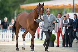 Price Tim, (NZL), Ringwood Sky Boy<br /> First Horse Inspection <br /> CCI4* Luhmuhlen 2016 <br /> © Hippo Foto - Jon Stroud