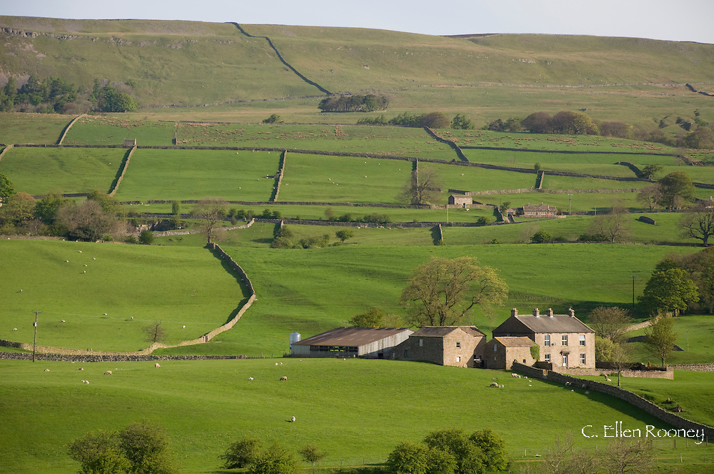 Stone buildings and walls surrounded by fields near Bainbridge, Wensleydale<br /> in The Yorkshire Dales National Park, Yorkshire, England, UK
