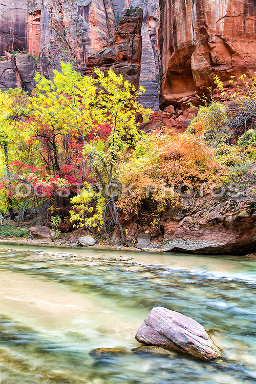 The Temple of Sinawava in Zion National Park Utah