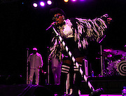 Janelle Monae performs during the Capital One concert at SummerStage Central Park in New York City, New York on September 29, 2016.