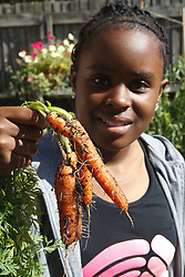 Teenage girl with carrots in vegetable patch. Cleared for Mental Health issues.