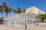 Urban Light Sculpture at the Los Angeles County Museum of Art