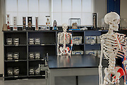 Anatomy Lab