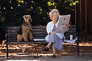 Silicon Valley, California; Menlo Park, California; Marlene Wood reading the newspaper on a park bench with her dog Benji before she opens her antique shop in downtown Menlo Park. (1999).