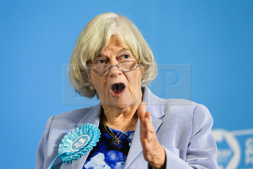 © Licensed to London News Pictures. 06/12/2019. London, UK. MEP for South West England and former Conservative MP ANN WIDDICOMBE speaks at an event in Westminster where Brexit Party unveils its defence and veteran's policy. Britons go the polls on 12 December in a General Election.  Photo credit: Dinendra Haria/LNP