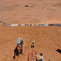Competitors get ready to rope a calf during the Red Rock Classic team roping competition at Red Rock Park in Church Rock.