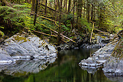 Olney Creek flows through a narrow gorge in the Snoqualmie National Forest near Sultan, Washington.