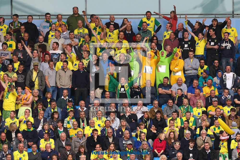 Picture by Paul Chesterton/Focus Images Ltd +44 7904 640267.The traveling Norwich fans during the Barclays Premier League match at The Etihad Stadium, Manchester.