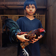 THE PHILIPPINES (Boracay). 2009. Vanrey Gala, 12, with his Uncle's game cock before the cockfighting at the Boracay Cockpit, Boracay Island. Photo Tim Clayton <br /> <br /> Cockfighting, or Sabong as it is know in the Philippines is big business, a multi billion dollar industry, overshadowing Basketball as the number one sport in the country. It is estimated over 5 million Roosters will fight in the smalltime pits and full-blown arenas in a calendar year. TV stations are devoted to the sport where fights can be seen every night of the week while The Philippine economy benefits by more than $1 billion a year from breeding farms employment, selling feed and drugs and of course betting on the fights...As one of the worlds oldest spectator sports dating back 6000 years in Persia (now Iran) and first mentioned in fourth century Greek Texts. It is still practiced in many countries today, particularly in south and Central America and parts of Asia. Cockfighting is now illegal in the USA after Louisiana becoming the final state to outlaw cockfighting in August this year. This has led to an influx of American breeders into the Philippines with these breeders supplying most of the best fighting cocks, with prices for quality blood lines selling from PHP 8000 pesos (US $160) to as high as PHP 120,000 Pesos (US $2400)..