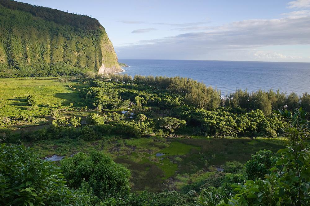 Waipi'o, Waipio Valley, Hamakua Coast, Big Island of Hawaii, Sunrise