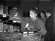 Canary and Bird Society of Ireland Annual Show.21/11/1956