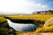 Upper Newport Bay Ecological Reserve