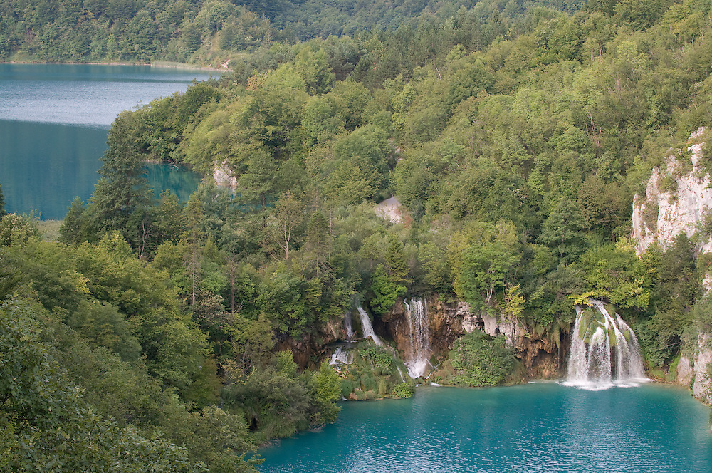 Small waterfalls into turquoise water in forest landscape of Plitvicer lake. Croatia. Eastern Europe.