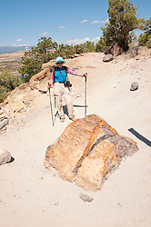USA, Utah, woman hiking at Escalante at Escalante Petrified Forest State Park to enjoy the petrified wood, views of the Grand  Staircase and Colorado Plateau, and local vegetation such as pinon pine and Utah juniper. Model Released MR.