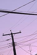 Telephone Wires, Annapolis