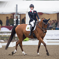 Para Classes - 2014 British Dressage National Championships