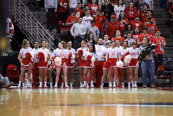 17 February 2018:  Redbird Cheerleaders during a College mens basketball game between the University of Northern Iowa Panthers and Illinois State Redbirds in Redbird Arena, Normal IL
