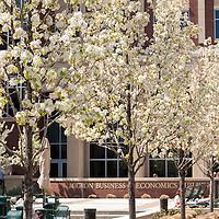 Campus Scenes, Spring 2016, Brian Angers Photos