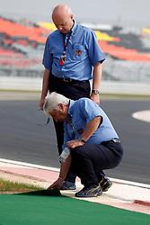 Motorsports / Formula 1: World Championship 2010, GP of Korea, Colln Haywood (FIA), Herbie Blast (FIA), Kontrolle
