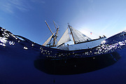 Corwith Cramer is a 134-foot steel brigantine built as a research vessel for operation under sail. Sargasso Sea, Bermuda | Die Planktonnetze werden von Amy NS Siuda, Ph.D. (Associate Professor, Oceanography<br /> Sea Education Association) in das Wasser gelassen.