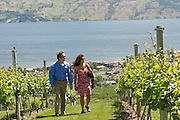 Mission Hill Winery, Okanagan, British Columbia, Canada