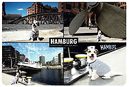 Postcard of my Rocky the Sailor Pup series.