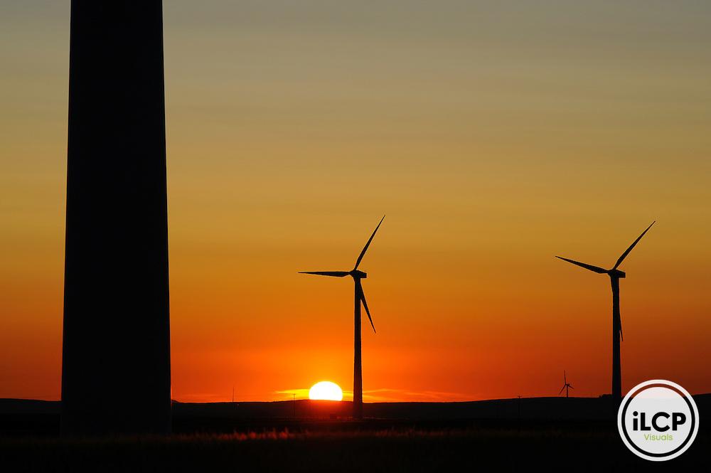 Wind turbines at sunset, Flathead River Valley, British Columbia, Canada.