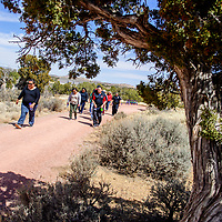"The University of New Mexico-Gallup  faculty and staff take to the campus trail for ""Walking out on Work"" to support the American Heart Association's National Walking Day in Gallup April 4."