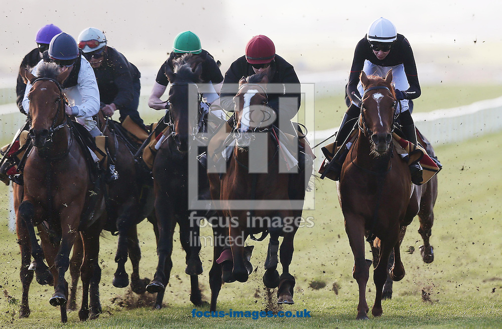 Australia ridden by Joseph O'Brien (on far right in white cap) is part of a group of Aidan O'Brien horses being schooled after racing today at The Curragh, Newbridge, Ireland.<br /> Picture by Lorraine O'Sullivan/Focus Images Ltd +353 872341584<br /> 23/03/2014
