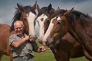 3 Clydedales &amp; Horsemen<br /> All Rights Reserved<br /> (C) Chris Frear Butterfield<br /> 01848 331999<br /> www.frearphoto.co.uk
