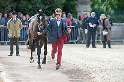 Tapner Paul, (AUS), Indian Mill<br /> First Horse Inspection - Mitsubishi Motors Badminton Horse Trials <br /> Badminton 2015