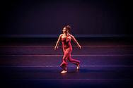 Boston Contemporary Dance Festival at the Paramount Theatre. Boston, MA 8/17/2013 Echo Contemporary Dance Company