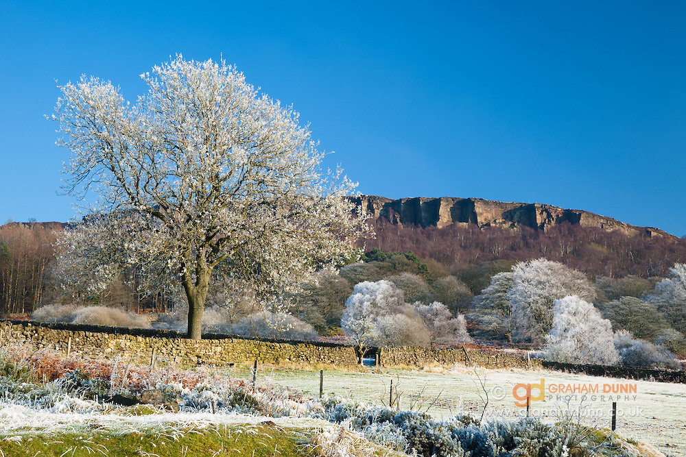 A spectacular hoar frost covering fields and trees below Millstone Edge, Peak District