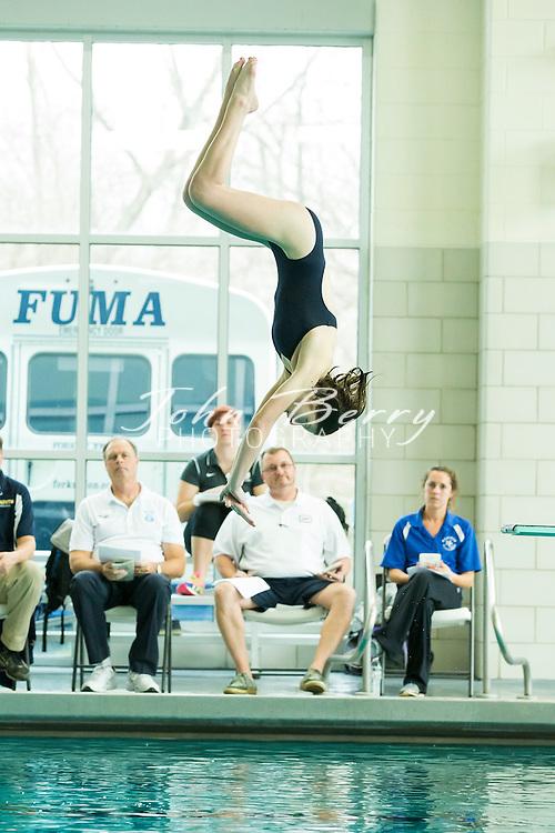 February 08, 2016.  <br /> Regional Dive Meet at FUMA.