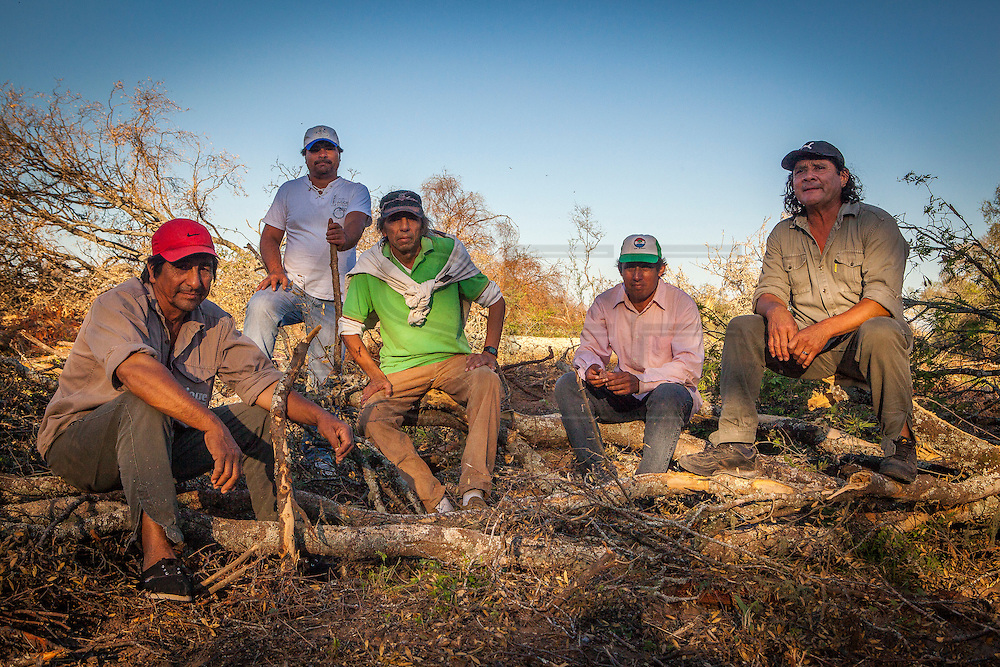 2014/11/23 – Quimili, Argentina: From left to right, members of the Guaycurú Indigenous Community: Raúl Eduardo Leal (56),  Pedro Campos (50),  Jorge Orellano (54), Basualdo Orellano (48) and Paulo Esteban (48) sit on some cut down trees where current deforestation  is taking place around the Bajo Hondo community. They say that in a few weeks all that forest will be replaced by more cultivation fields. The region around Quimili on the Santiago Estero Province is being vastly converted from forestland into fields to produce soya, detroying the habitats for local species and indigenous people. (Eduardo Leal)