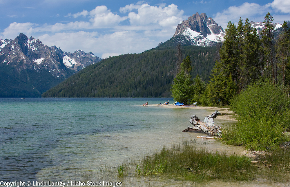 Idaho, Stanley, Redfish Lake. Vacationers relaxing in the clear blue waters of Redfish Lake under the  snowcapped mountains of the Sawtooth Range, Sawtooth National Recreation Area, near Stanley, Idaho, USA