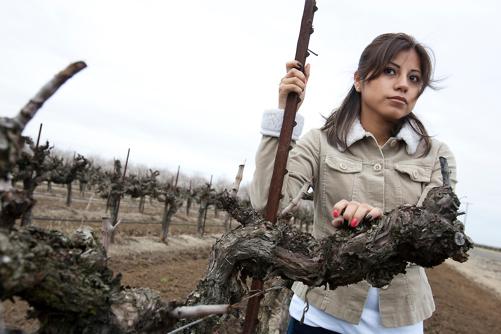 Alesia, one of the women being profiled by Mily. Alesia, one of the many women who have reported being sexually harassed while working in the fields in Central California. Please contact Todd Bigelow directly with your licensing requests.
