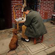 Dog and owner conversation, Shanghai, China, Asia