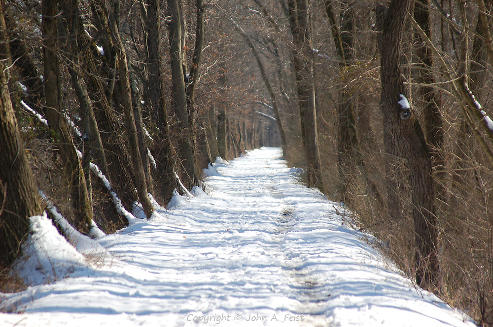 Footsteps in the snow covered towpath of the D and R Canal
