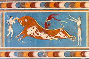 The Minoan Palace at Knossos. Wall painting of bull jumping.