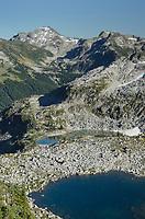 Marriott Basin, Mount Rohr is the highest peak in the distance, Coast Mountains British Columbia